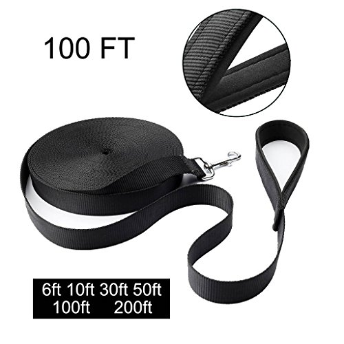 100 feet dog leash - 2