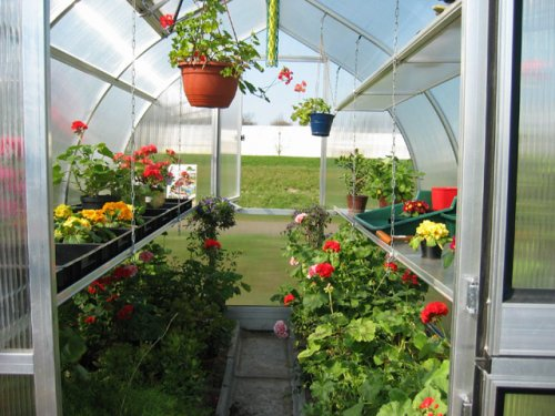 Riga Greenhouse - Hoklartherm RIGA III 9.6 x 10.5-Foot Greenhouse