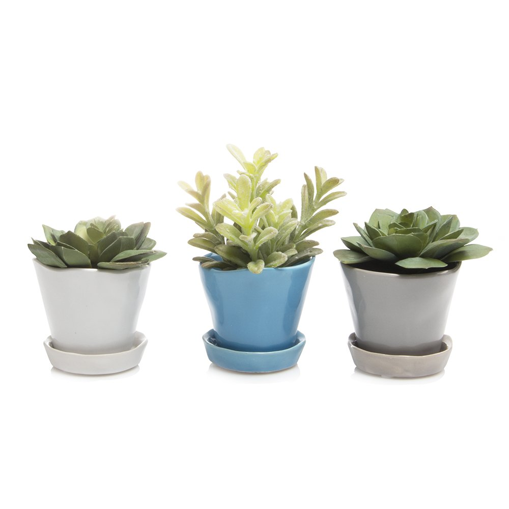 Chive – Set of 3 Tika, Small Round Succulent Cactus Pot and Saucer, 3 Ceramic Flower and Plant Container, Drainage Hole and Detachable Saucer, Mini Pot Great for Indoor, Bulk White, Blue, Grey