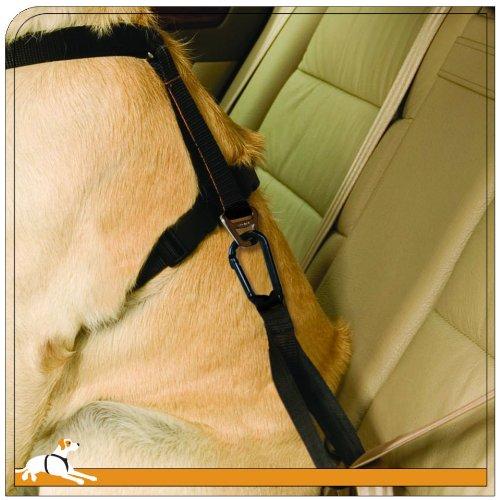 Seat Belt Loop - 1