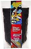 Urban Platter 1 Nigella Seeds (Kalonji), 250G