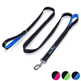 Paw Lifestyles Heavy Duty Dog Leash - 2 Handles - Padded Traffic Handle for Extra Control, 7ft Long - Perfect Leashes for Medium to Large Dogs