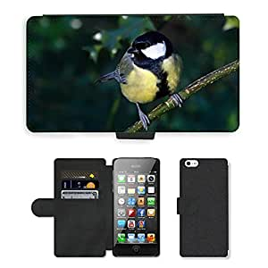 GoGoMobile Flip PU Leather Wallet Case with Credit Card Slots // M00119503 Bird Great Tit Wildlife Garden Small // Apple iPhone 5 5S 5G