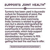 Nature's Way Premium Turmeric Extract, 500 mg per