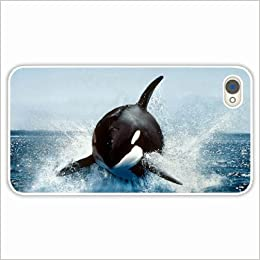 Apple IPhone 4 4S Cases Customized Gifts Orca Whale Wallpaper Animals White Hard PC Case 0532588849653 Amazon Books