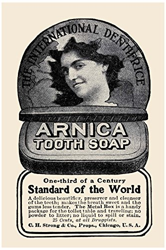 Buyenlarge Arnica Tooth Soap Paper Poster, 18