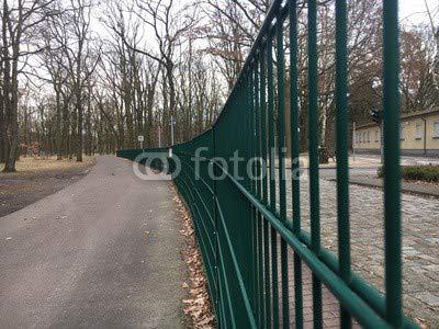 Adrium verde recinzione Andrà nel bosco (197372357)