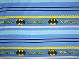 Batman No Way Brozay 100% Microfiber (FLAT SHEET ONLY) Size TWIN Girls Kids Bedding