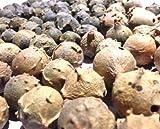 oak fruit - GALL OAK Querus Infectoria MAJUPHAL FRUIT Ayurveda WHOLE - 200g