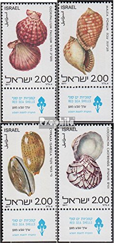 Israel 726-729 with Tab (Complete.Issue.) 1977 Mussels and Snails (Stamps for Collectors) Water Animals