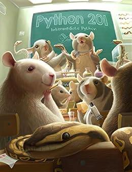 Python 201: Intermediate Python by [Driscoll, Michael]
