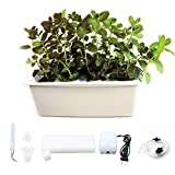 WePlant Home Garden Hydroponics Planting Box with 24 Pods,Aquarium Air Pump and Buoy, Outdoor DIY Soilless Plant Vegetable Like Coriander, Spinach, Chive, Sprout