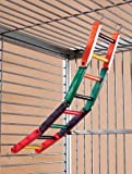 20in Flex Colored Bird Cage Ladder, My Pet Supplies