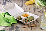100% Compostable Clamshell Take Out Food Containers