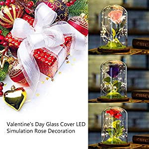 AOLVO Beauty and The Beast Enchanted Rose, Silk Rose and Led Light with Green Grass Lawn in Glass Dome on Wooden Base for Home Decor Wedding Anniversary 57