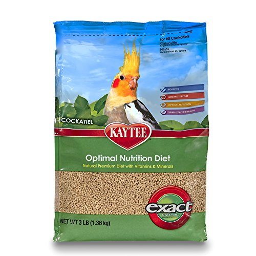 Kaytee Exact Natural Bird Food for Cockatiels, 3-Pound by Kaytee