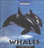 Whales, Daniel A. Greenberg, 0761411674