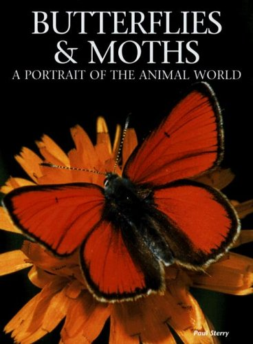 Butterflies and Moths: A Portrait of the Animal World by New Line Books