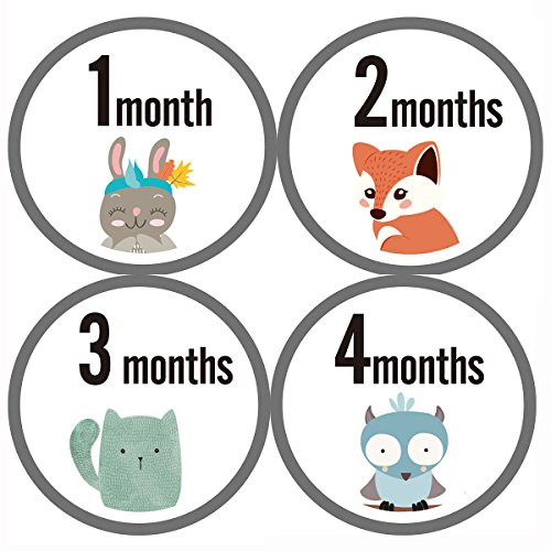 12 Scrapbooking Stickers - MAGJUCHE Monthly Baby Milestone Stickers Clean Animals, Premium Baby Belly Stickers, First Year, Months 1-12, Shower Gift