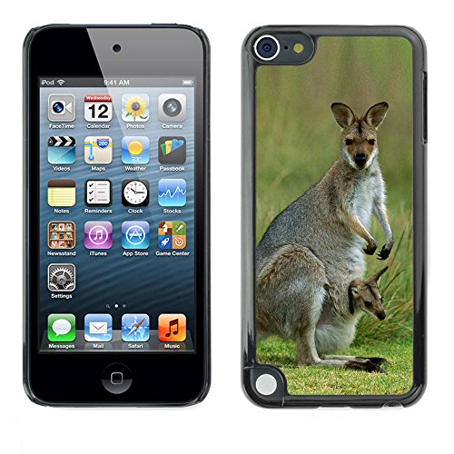 STPlus Kangaroo Animal Hard Cover Case for Apple iPod Touch 5