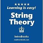 String Theory | IntroBooks