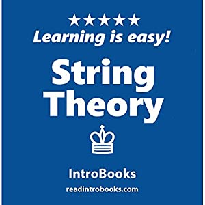 String Theory Audiobook