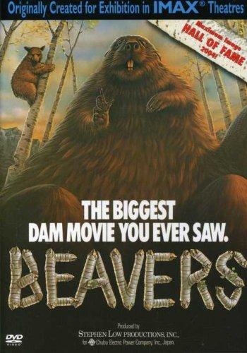 Beavers (Large Format)