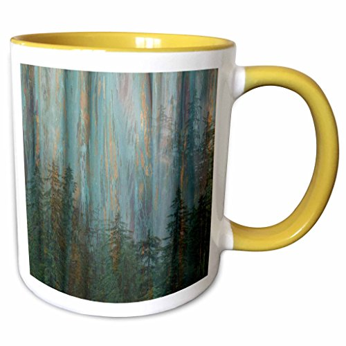 3dRose Danita Delimont - Abstracts - USA, Alaska, Misty Fiords National Monument. Abstract of forest. - 15oz Two-Tone Yellow Mug (mug_208381_13)