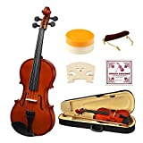 1/2 Half Size Acoustic Violin, Strong Wind Solid Wood Natural Varnish Violin Beginner Kit with Hard Case, Shoulder Rest, Bow, Rosin for Starter Students Children