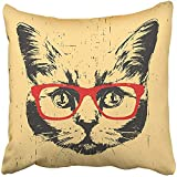 Throw Pillow Cover Decorative Polyester 18x18 Inches Black Face Portrait of British Shorthair Cat with Glasses Animal Cushion Pillow Case Square Two Sides Print for Home