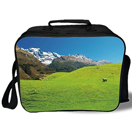Nature 3D Print Insulated Lunch Bag,Idyllic Hills Mountain Land Farm New Zealand Snowy Peaks Spring Landscape,for Work/School/Picnic,Lime Green Brown Blue
