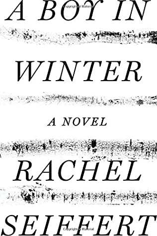 Image result for a boy in winter book cover