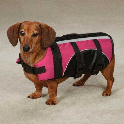 Guardian Gear ZM3441 Brite Pet Life Preserver Color: Raspberry, Size: Small, My Pet Supplies
