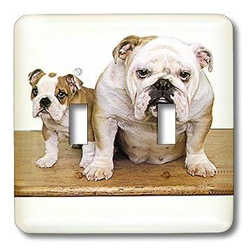 lsp_413_2 Dogs Bulldog - British Bulldog - Light Switch Covers ...