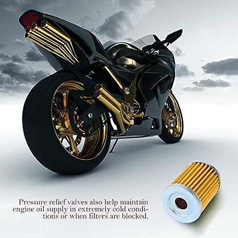 Ozark 250 230 und 250 Quadrunner 160 BlackEdragon /Ölfilter Suzuki King Quad 300
