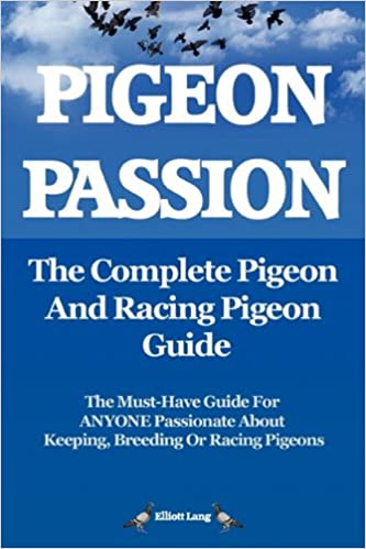 games for free  racing pigeons