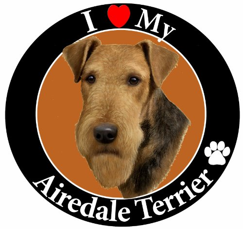Airedale Magnet (