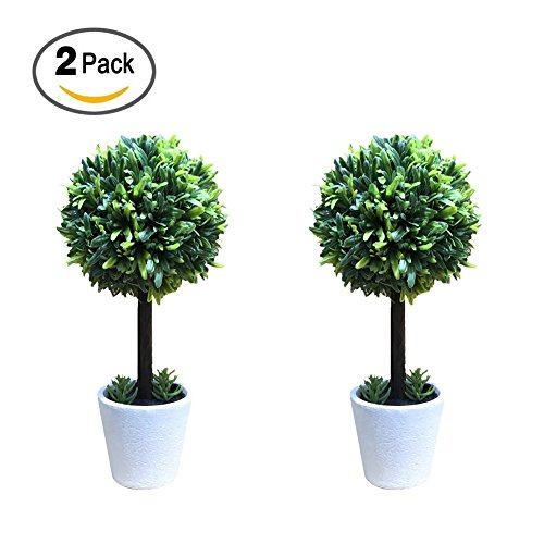 GOBEAUTY 2 Pack Artificial Plant Bonsai Greative Mini Grass Ball Potted Small Tree For Home Garden Hotel Decor Decorative Flower Accessories by GOBEAUTY