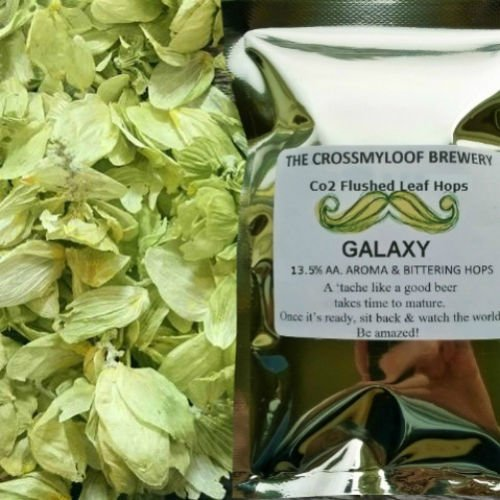 100g of Galaxy Hop Leaf 13-16% AA - 2017. Cold Stored CO2 Flushed, or Poly Vacuum packed for Freshness The Crossmyloof Brewery