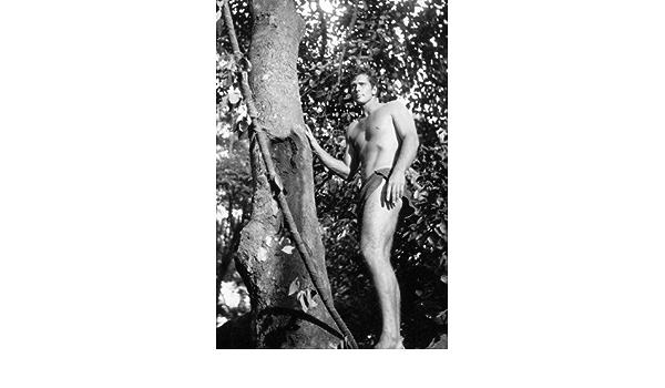 Mini póster de Ron Ely in Tarzan (28 x 43 cm): Amazon.es ...