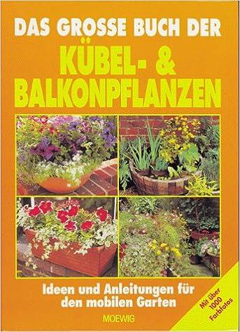 Das Grosse Buch Der Kubel Und Balkonpflanzen Ideen Und Anleitungen