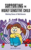 Download Supporting the Highly Sensitive Child: Making Sense of Meltdowns (My Highly Sensitive Child Book 2) in PDF ePUB Free Online