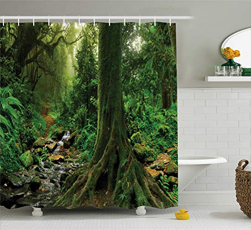 Ambesonne Apartment Decor Shower Curtain, Rain Forest Scene with River in North Forest in Early Morning Humid Fog Print, Fabric Bathroom Decor Set with Hooks, 84 inches Extra Long, Forest Green