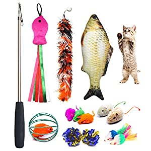 PETOY Cat Toys Set, Cat Retractable Teaser Wand, Catnip Fish, Interactive Cat Feather Toy, Mylar Crincle Balls, Two Cotton Mice, Two Fluffy Mouse 18