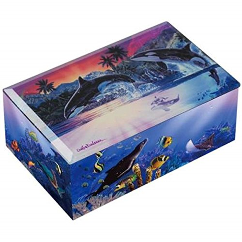 Wl Ss Wl 23230 Killer Whales Breaching Water World Of Orcas Colorful Music Box