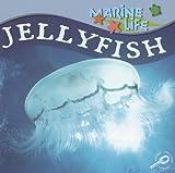 Jellyfish, Lynn M. Stone, 1595154396