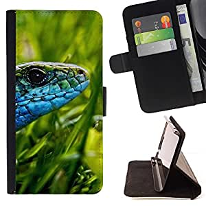 For HUAWEI P8 Lite - Lizard Green Grass Sun Blue Snake /Leather Foilo Wallet Cover Case with Magnetic Closure/ - Super Marley Shop -