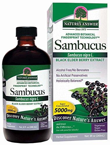 organic elderberry extract - 5
