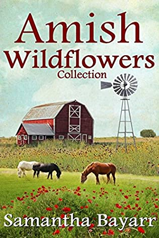 book cover of Little Wild Flower BOXED SET