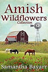 Amish Wildflowers (Amish Romance): 3 Book Collection